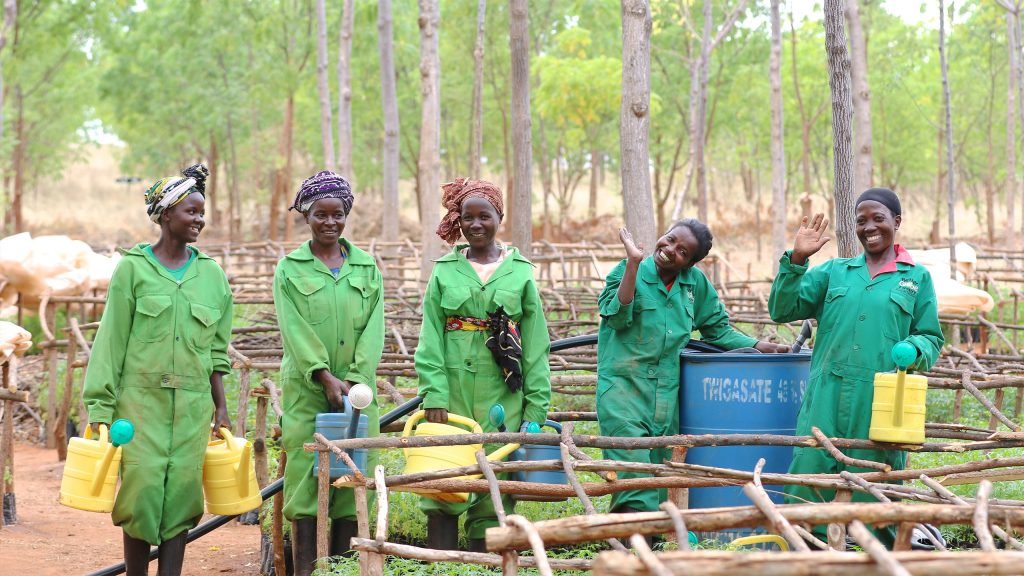 At the tree nursery in Kiambere, 72% of the employees are women, Kenya 2017