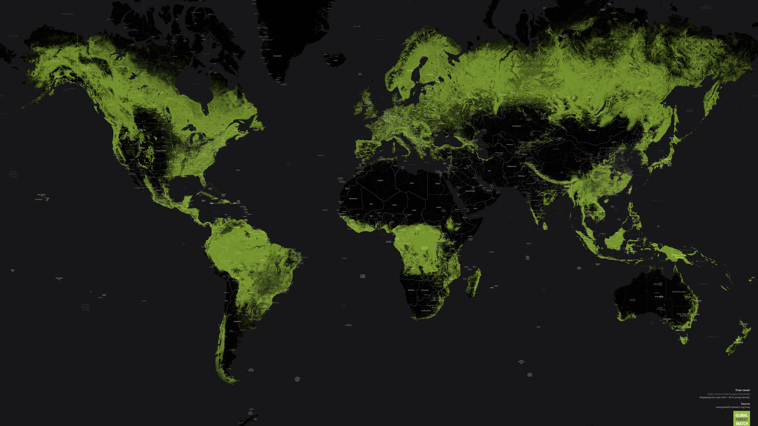 Impact on the world's forests