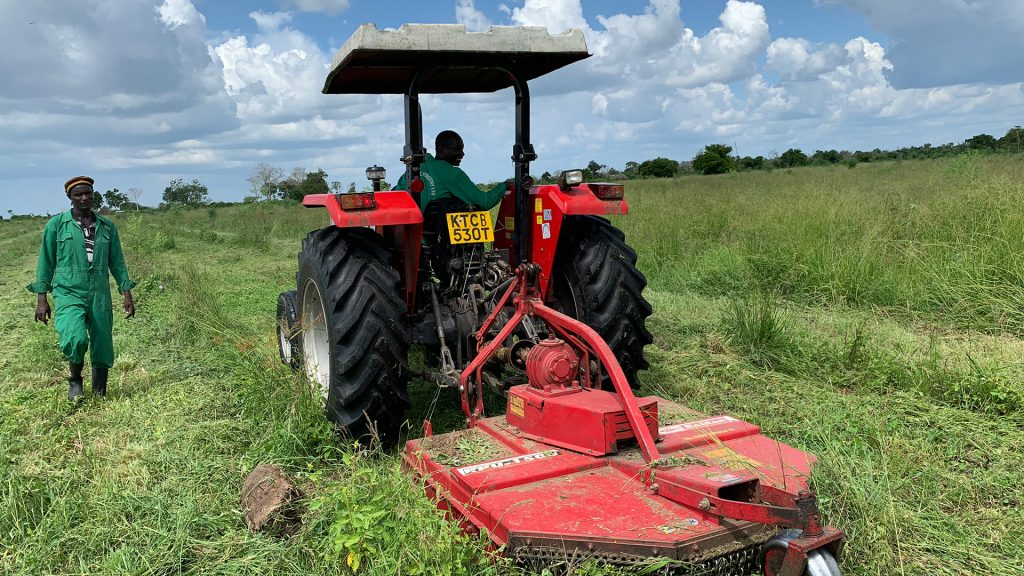 Traktorerna hjälper till att klippa gräset för att underlätta tillväxten. Foto: Torgny Johnsson